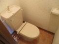 タウンズ永山C棟101号室トイレ